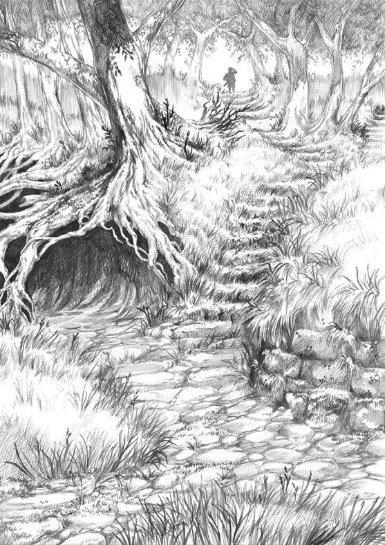 Hobbit Tales, Forgotten Paths