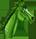 Green Horse Bullet