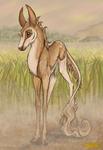 Sisu | Filly | Silverthorn Herd Member