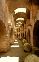 Flavian Amphitheater  8 by mgv4