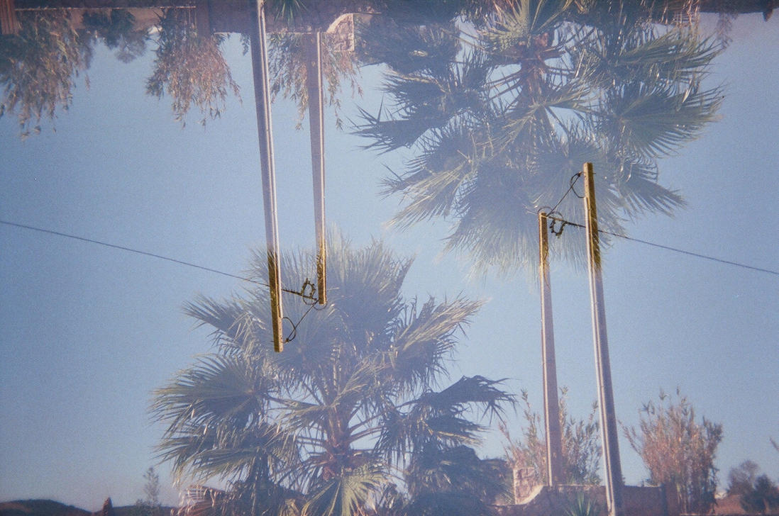 Reflected Palm by TheNewBlueBlood