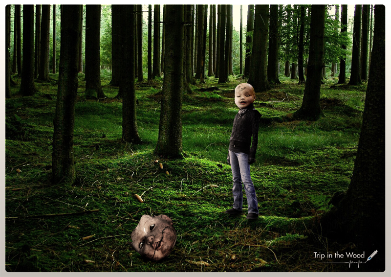 Trip in the Wood by byverter