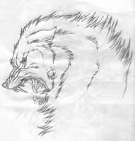 Wolf by xikosampaio