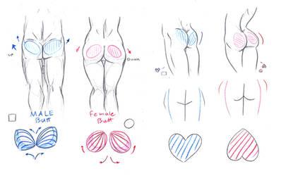 Butt Tutorial by ImoonArt