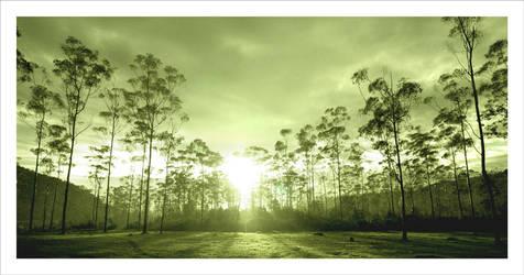 good morning 2 by YunTo