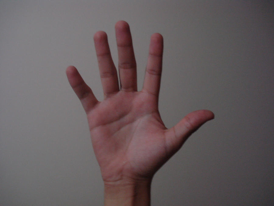 Hand Poses 1 by kokonut3 on DeviantArt Hand