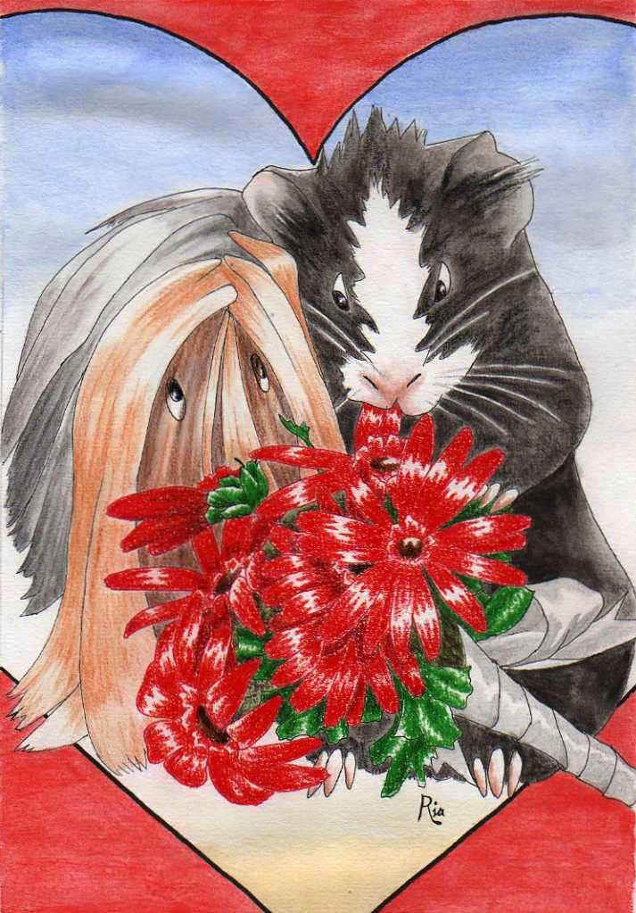 guinea pig valentine by secretplanet