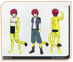 Devin Reference Sheet