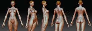 cammy zbrush practica 3D