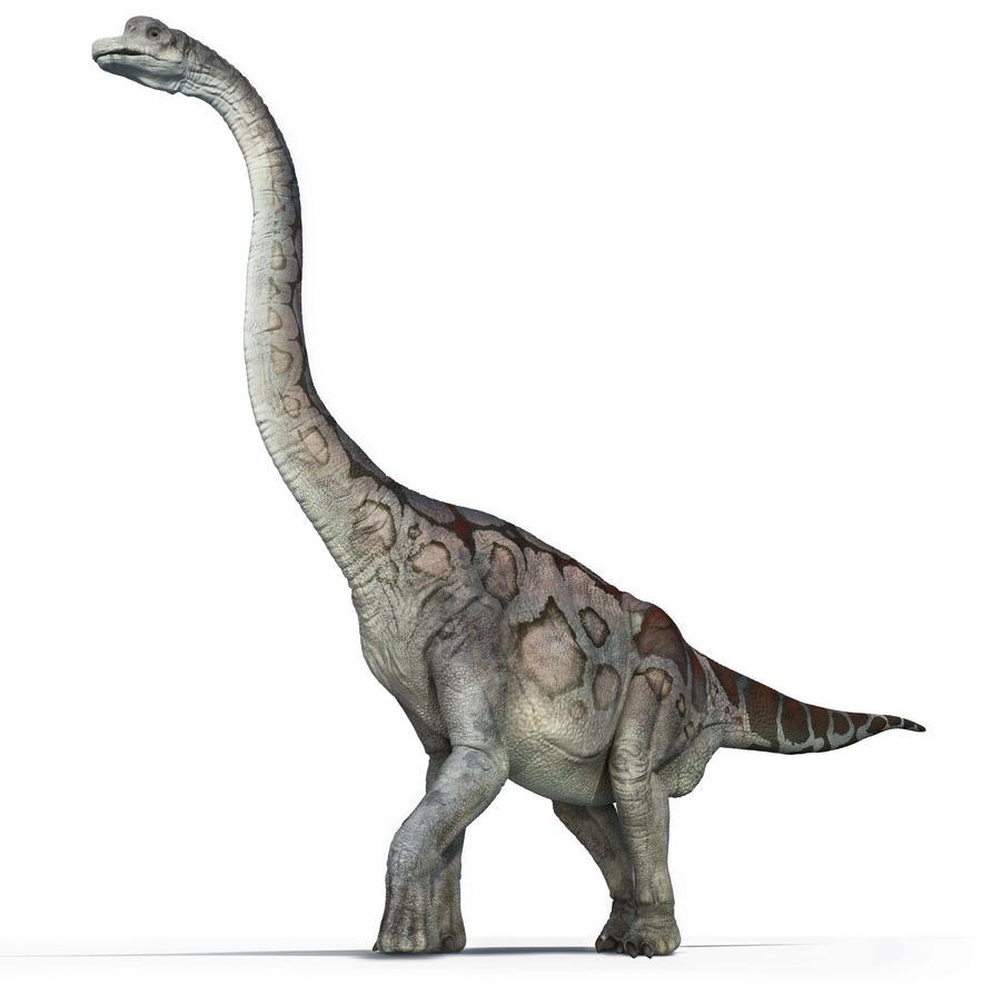 Brachiosaurus by ministerart