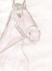 September: equus