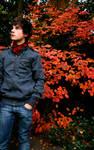 watching autumn