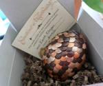 Earth Dragon Egg - SOLD!