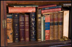 A real Myst book - library