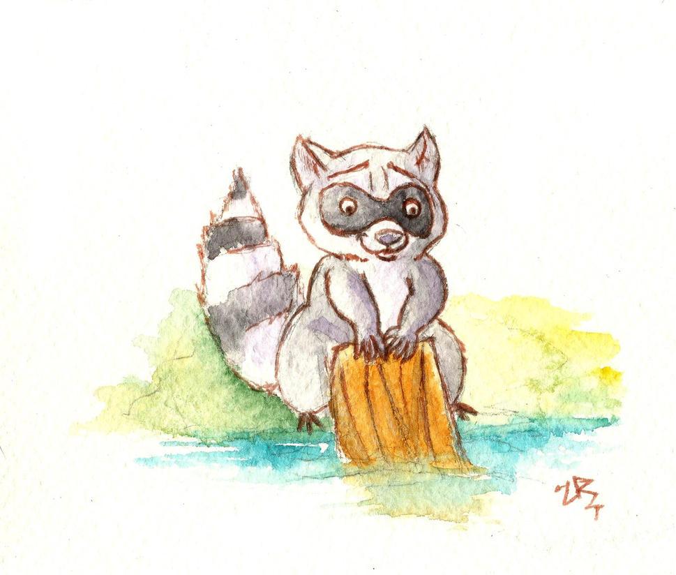 Raccoon by zarielcharoitite