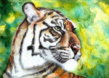 tiger by zarielcharoitite