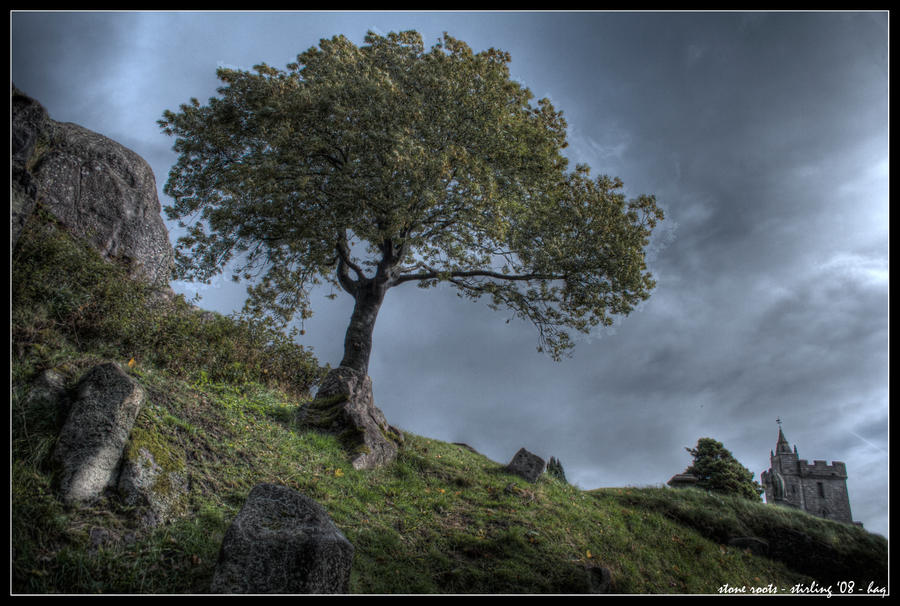 stirling - stone roots by haq