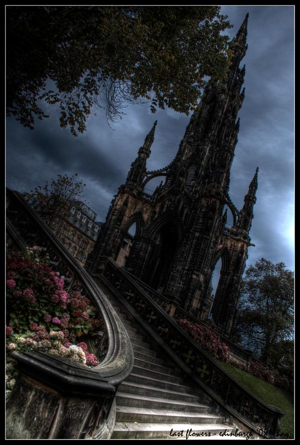 edinburgh - last flowers by haq
