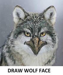 Draw Wolf Face Meme