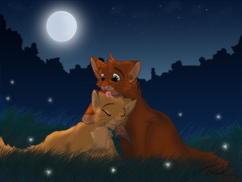 Pet ^_^ Fireheart_and_Sandstorm_2_by_Blaukralle