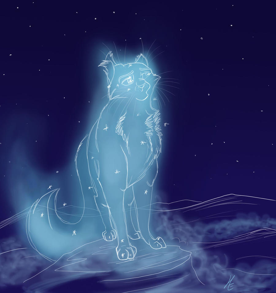 Starry Fur Warrior Cat