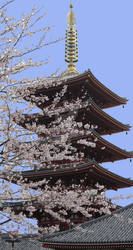 Asakusa 5 Story Pagoda