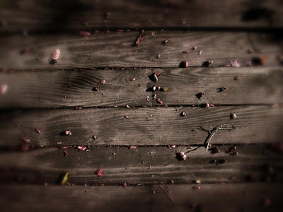Back Deck by brsev