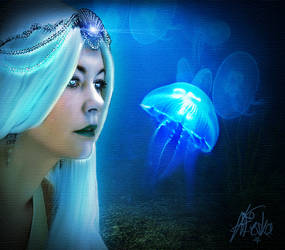 Mermaid's Wonder by rayayakuza