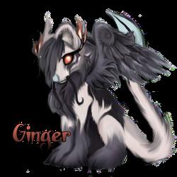 Ginger by rayayakuza