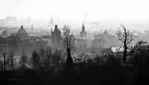 - PRAGUE -