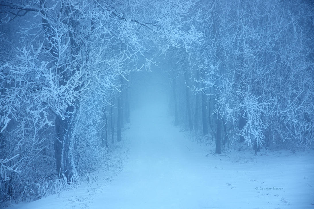 - Fairywood in Winter's Realm - by UNexperienced