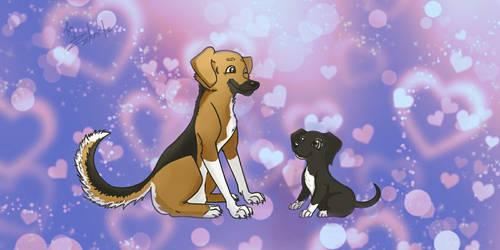 Love my cute dogs  by Ziknale