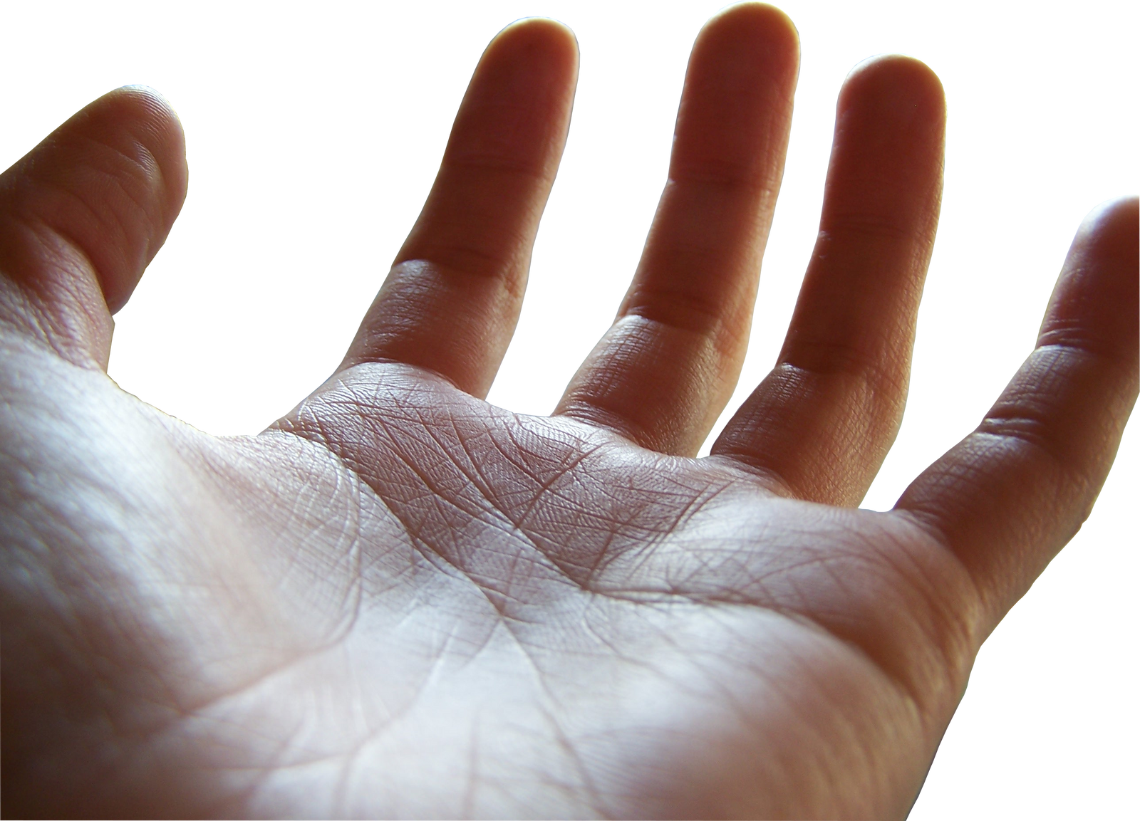 open palm png (female hand) by megakorean on DeviantArt