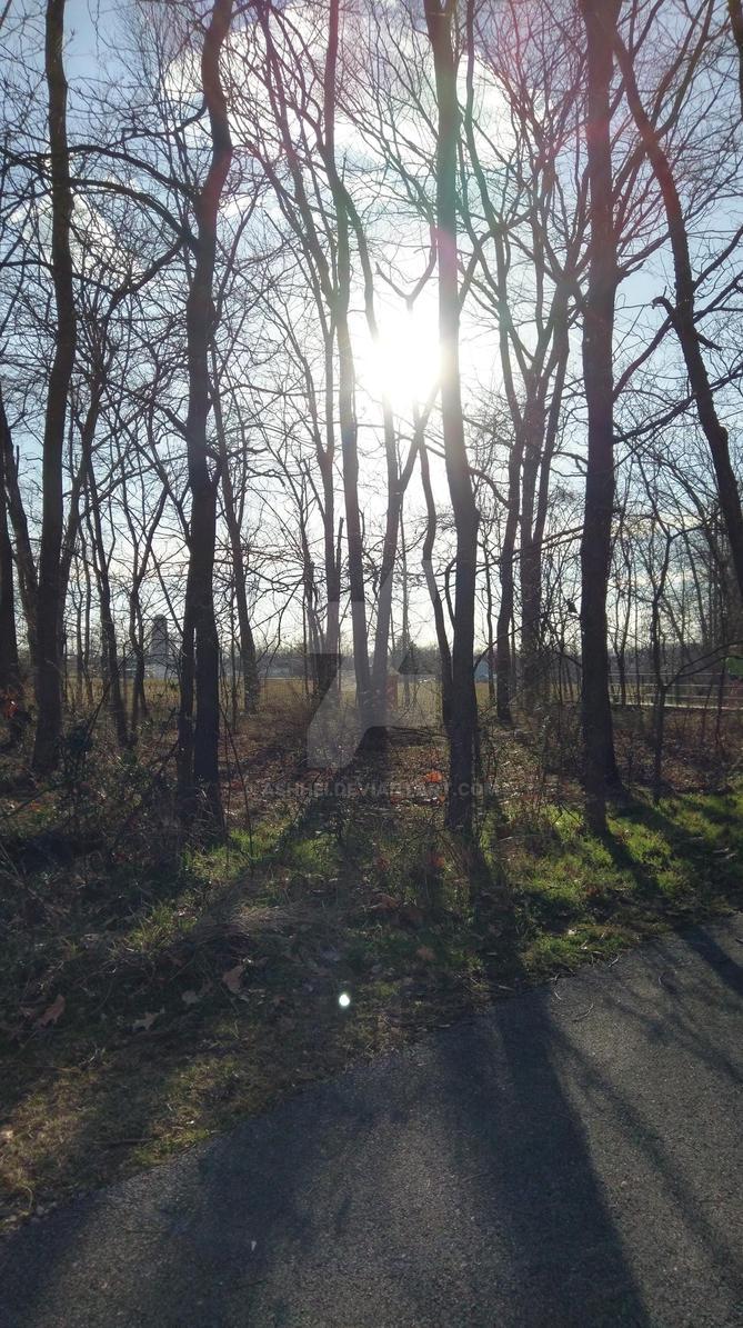 Walk In The Park  by Ashhei