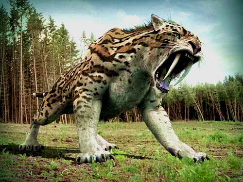 Thel 'Vadam, The last noble Sabre tooth tiger Sabre_tooth_tiger_by_tresspaser64-d5hwx1k