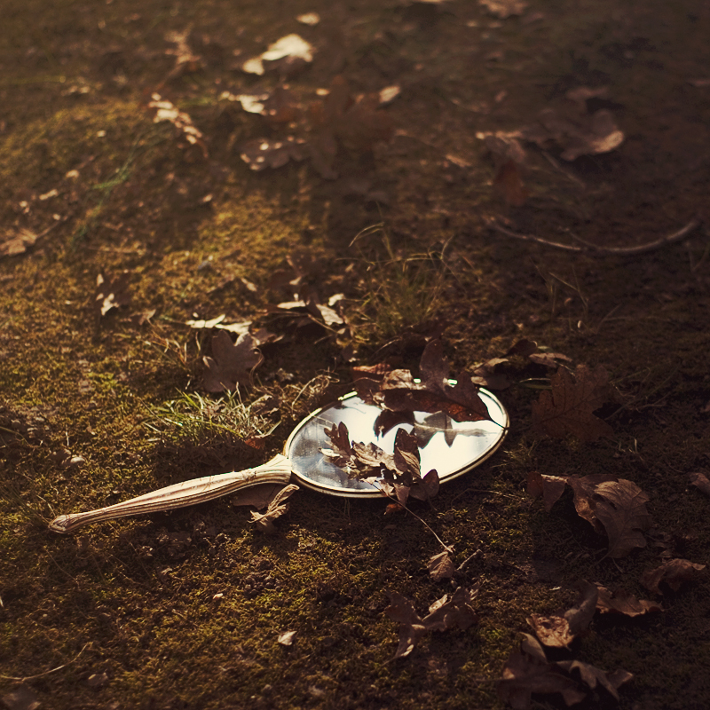 reflections of autumn by aimeelikestotakepics