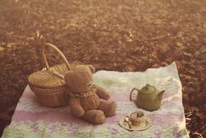 autumn tea party by aimeelikestotakepics
