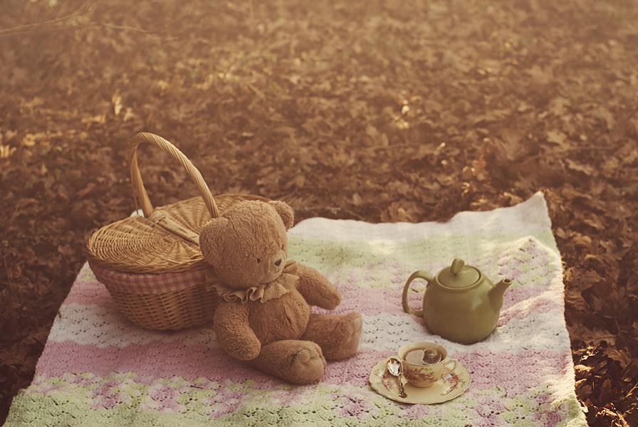 Mede - kako im odoleti ? Autumn_tea_party_by_aimeelikestotakepics