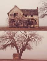 decay by aimeelikestotakepics