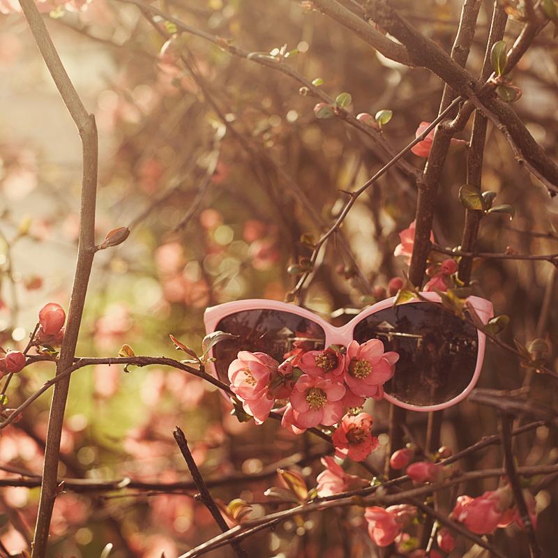 waiting for summer by aimeelikestotakepics