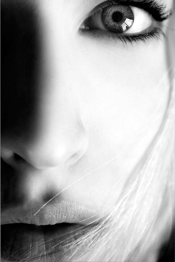 Clarity by aimeelikestotakepics