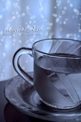 Magical Rain by Natany