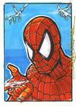 First Spider-man of 2008