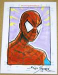 Artmazing Spiderman
