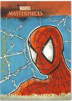 Spiderman marvel card by gravyboy