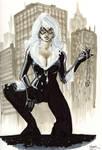 NYCC Black Cat