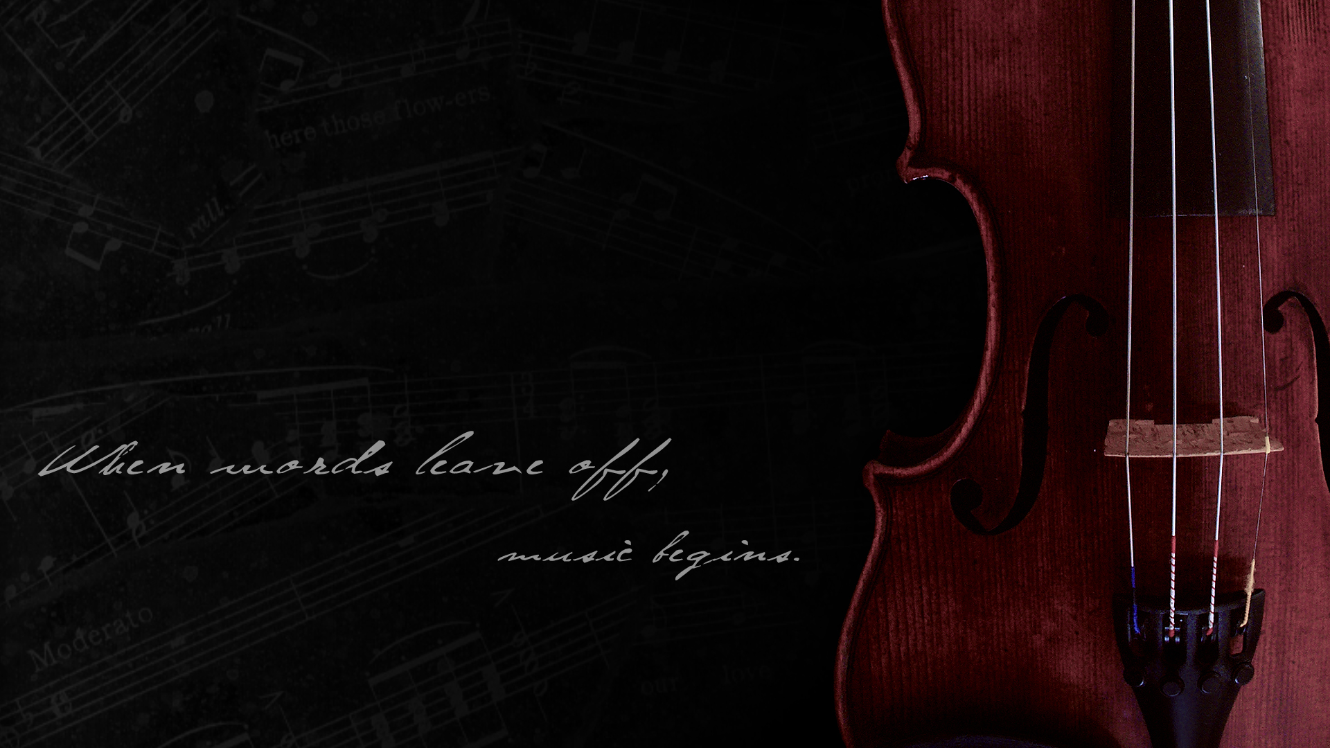 violin wallpaper by xerix93 on deviantart