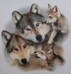 wolves by t-krisztin