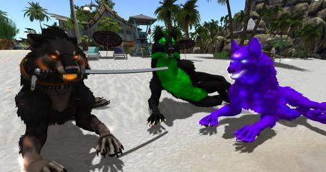 Dire beach meeting