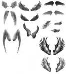 Angel Wings JPEG